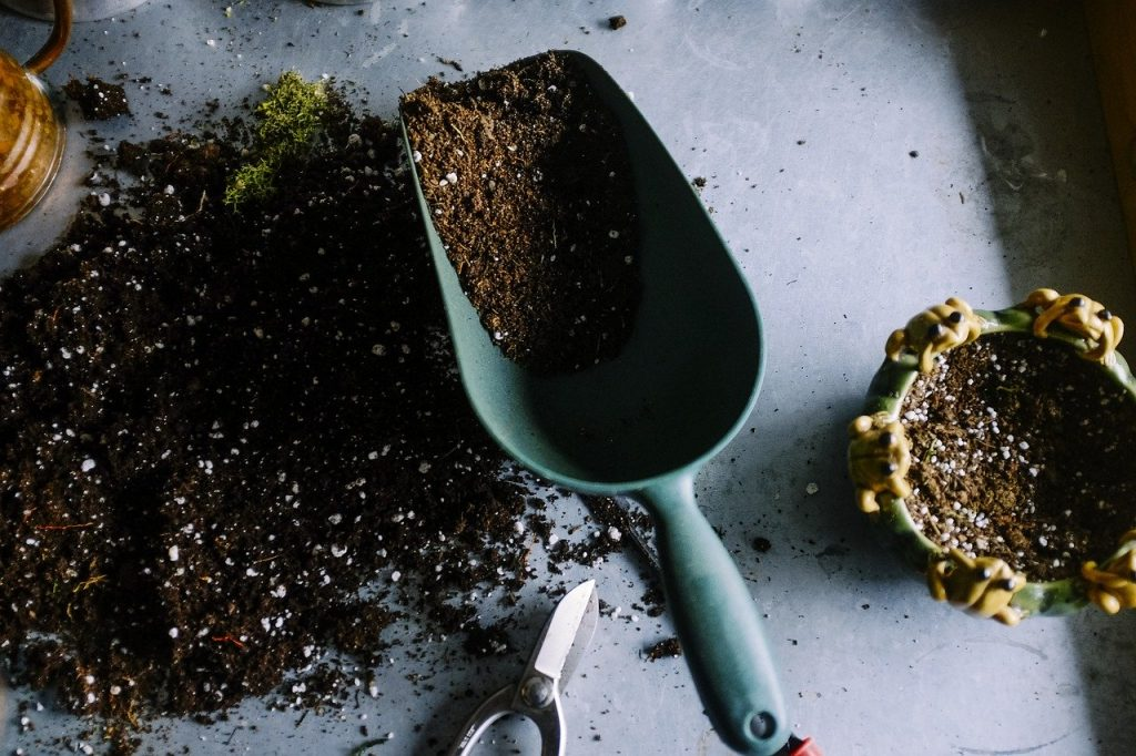 dig soil to plant flowers at home